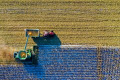 Crops being sprayed by a tractor